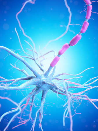 3d rendered illustration of a human nerve cell Stockfoto