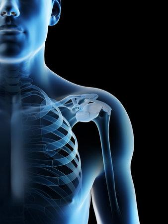 3d rendered illustration of a mans skeletal shoulder Archivio Fotografico - 117989123