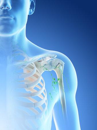 3d rendered illustration of a mans lymph nodes of the shoulder area