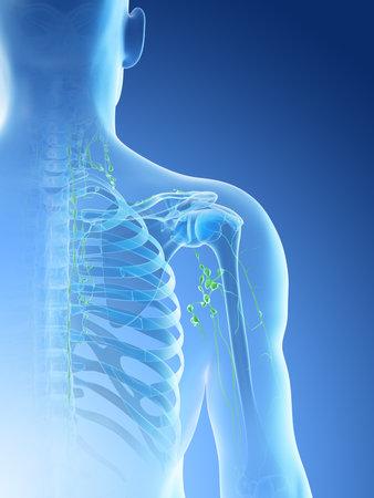 3d rendered illustration of a mans lymph nodes of the shoulder area Archivio Fotografico - 117988871