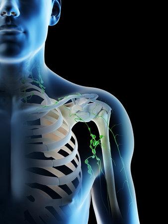 3d rendered illustration of a mans lymph nodes of the shoulder area Archivio Fotografico - 117988422
