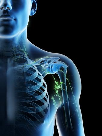 3d rendered illustration of a mans lymph nodes of the shoulder area Archivio Fotografico - 117988423