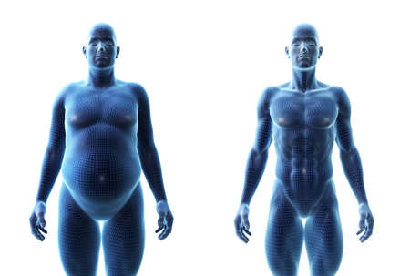 3d rendered medically accurate illustration of a comparision of a fit and obese male Stock Photo