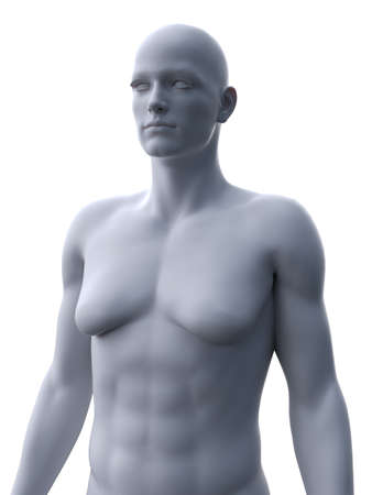 3d rendered medically accurate illustration of a male with gynecomastia 版權商用圖片
