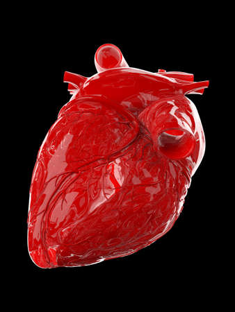 3d rendered medically accurate illustration of a red glossy human heart Stock Photo