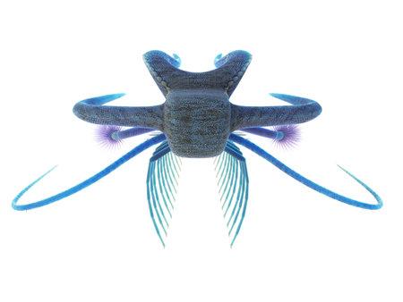 3d rendered illustration of a Marella
