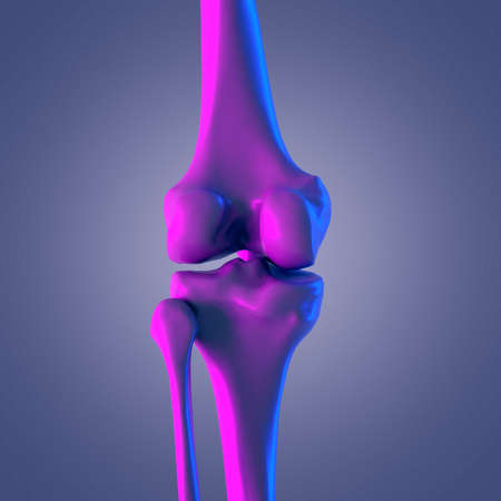 3d rendered abstract rendering of the knee joint