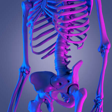 3d rendered abstract rendering of the lower spine