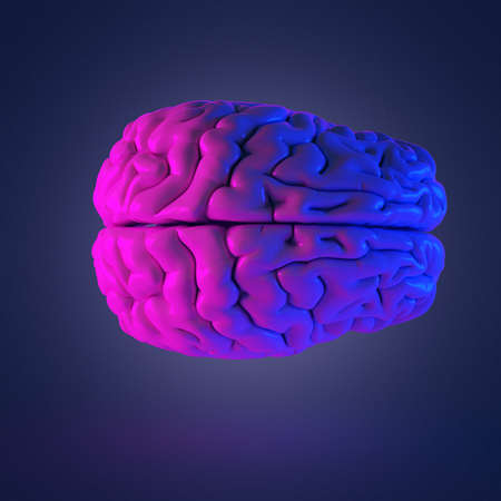 3d rendered abstract rendering of a brain Stock Photo