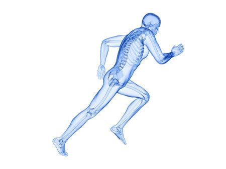 3d rendered illustration of a joggers skeleton