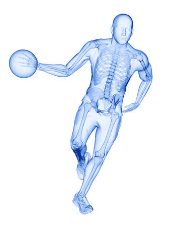 3d rendered medically accurate illustration of a basketball players skeleton
