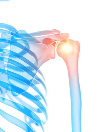 3d rendered medically accurate illustration of the shoulder joint showing pain
