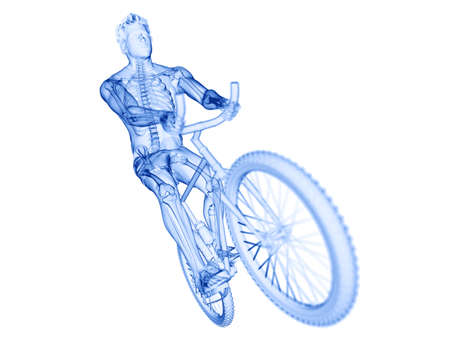 3d rendered illustration of a cyclists skeleton Stock Photo