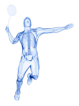 3d rendered medically accurate illustration of the skeleton of a badminton player Imagens