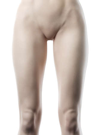 3d rendered illustration of a females bottom 版權商用圖片