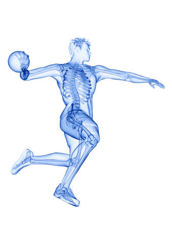 3d rendered medically accurate illustration of the skeleton of a handball player Imagens
