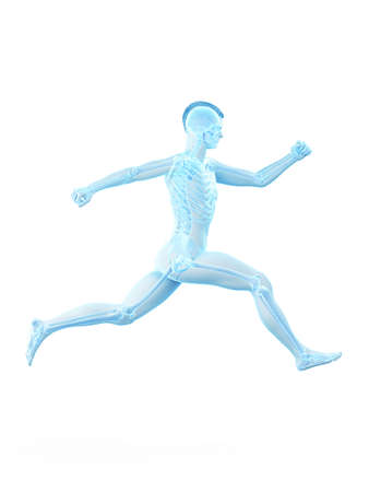 3d rendered medically accurate illustration of a man running 版權商用圖片