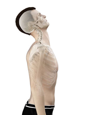 3d rendered medically accurate illustration of a mans neck