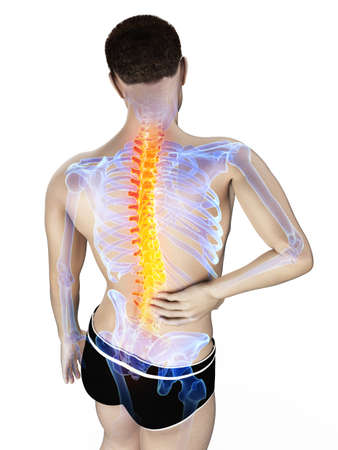 3d rendered medically accurate illustration of a mans painful back Reklamní fotografie