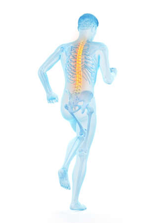 3d rendered medically accurate illustration of a walking man with a painful back Imagens