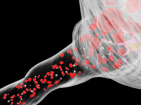 3d rendered medically accurate illustration of a human blood vessel Stock Illustration - 122063402