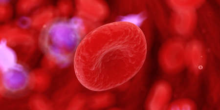 3d rendered medically accurate illustration of cells Stock Photo