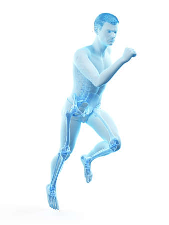 3d rendered medically accurate illustration of a runners painful joints 版權商用圖片