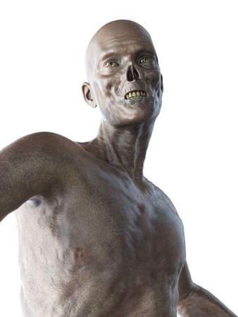 3d rendered illustration of a zombie isolated on white
