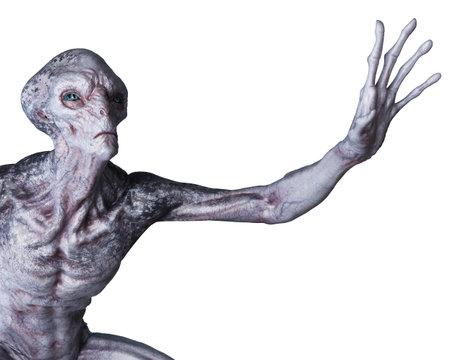 3d rendered illustration of an alien on white background