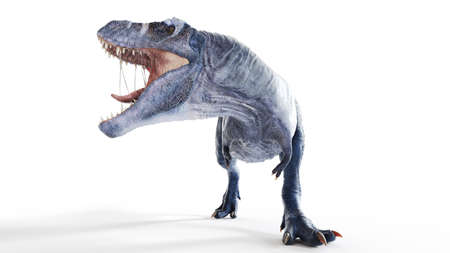 3d rendered illustration of a t-rex isolated on white Stock fotó