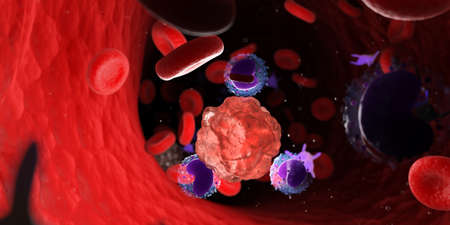3d rendered medically accurate illustration of leucocytes attacking a cancer cell Stock Photo