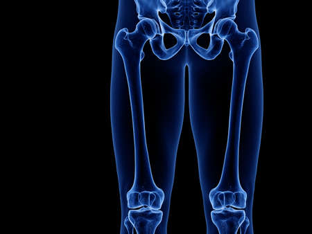 3d rendered medically accurate illustration of the upper leg bones Stock Illustration - 128123115