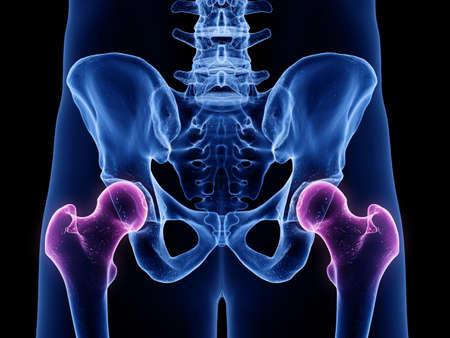 3d rendered medically accurate illustration of the hip joints Stock Photo