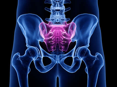 3d rendered medically accurate illustration of the sacrum Stock Photo