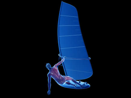 3d rendered medically accurate illustration of a windsurfers muscle anatomy