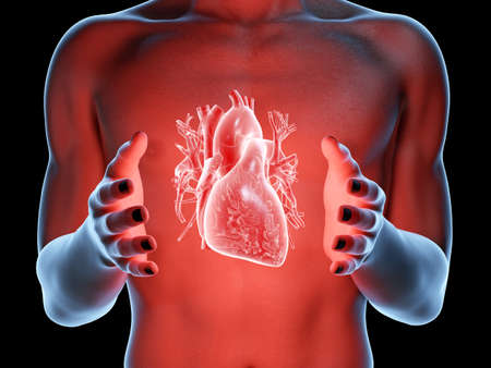 3d rendered medically accurate illustration of a man holding a heart