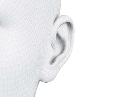 3d rendered medically accurate illustration of a wireframe ear