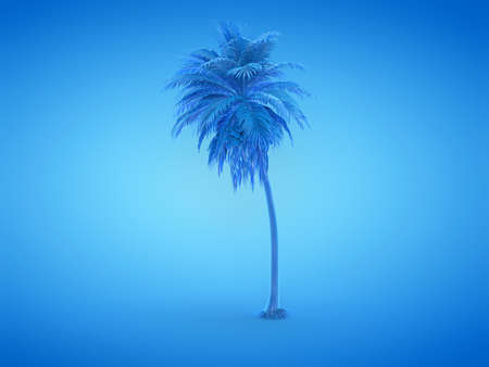 3d rendered illustration of a blue palm tree