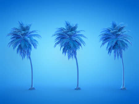 3d rendered illustration of three blue palm trees Stockfoto