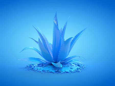 3d rendered illustration of a blue aloe vera plant