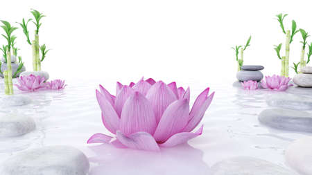 3d rendered spa illustration - stones bambus and lotus flowers