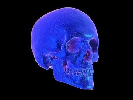 3D gerenderte abstrakte Darstellung im Synthwave-Stil eines menschlichen Schädels