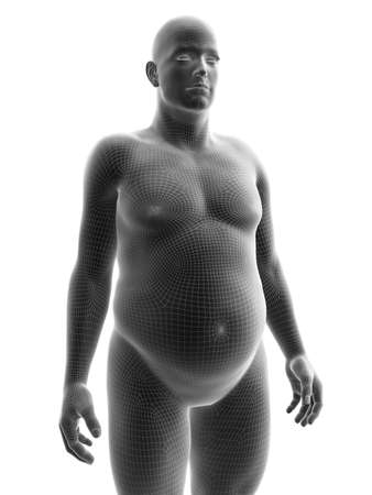 3d rendered medically accurate illustration of an obese male