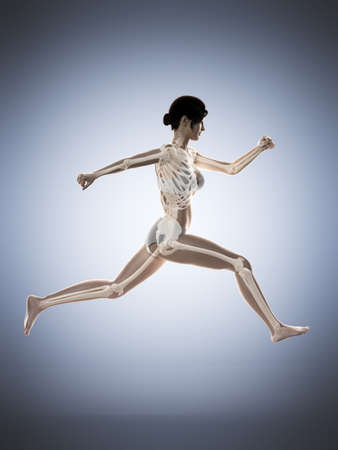3d rendered medically accurate illustration of a woman running Imagens