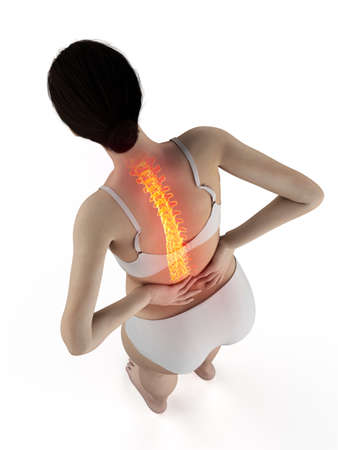 3d rendered medically accurate illustration of a woman having a painful back Reklamní fotografie