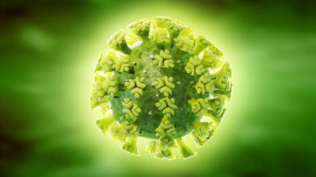 3d rendered illustration of the SARS-CoV-2,  corona virus