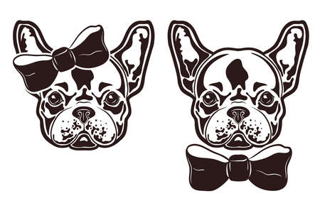 Vector illustration of french bulldogs with bows. French bulldogs girl and boy.