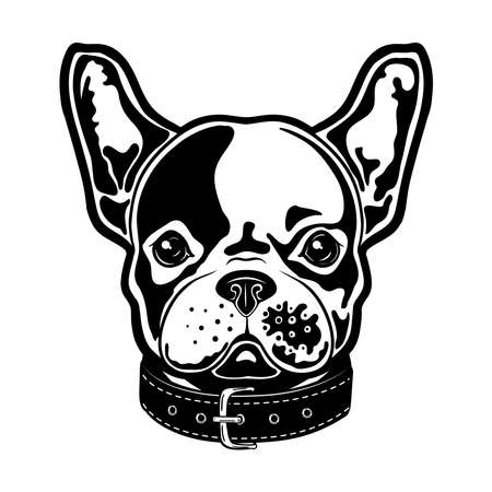 Vector illustration of a french bulldog with a bow. French bulldog boy