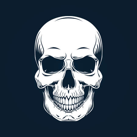 White skull with a lower jaw on a dark background. Vector illustration.