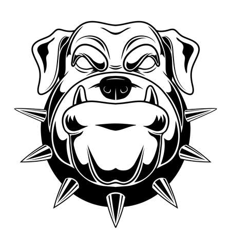 Vector illustration of a bulldog. Angry bulldog for a t-shirt. Be aware of dogs.